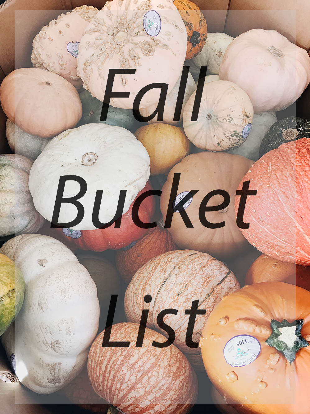 Fall Bucket List - 26 and Not Counting